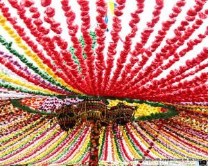 Череда фестивалей на Тенерифе