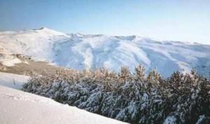 Открыт горнолыжный сезон на знаменитом курорте Сьерра-Невада
