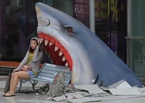 Туристов в Тайланде на пляже напугала рифовая акула