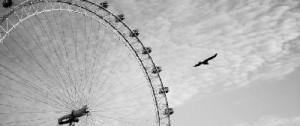 Самое большое на планете колесо обозрения будет построено в Дубае