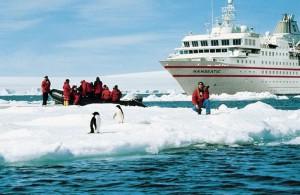 Многочисленные туристы представляют опасность для Антарктики