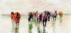 В Костромской области начал свою работу интерактивный музей «Все о лошадях»