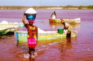 Сенегал вводит новые правила въезда в страну