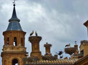 В испанском городе Альфаро проходят театрализованные экскурсии