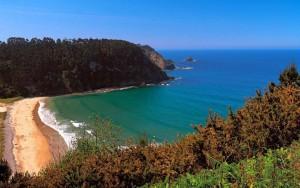 На испанском пляже Сан-Лоренцо пройдет фестиваль домашнего пива