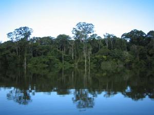 В Перуанском национальном заповеднике создан гастрономический маршрут