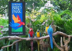 парке птиц в Сингапуре